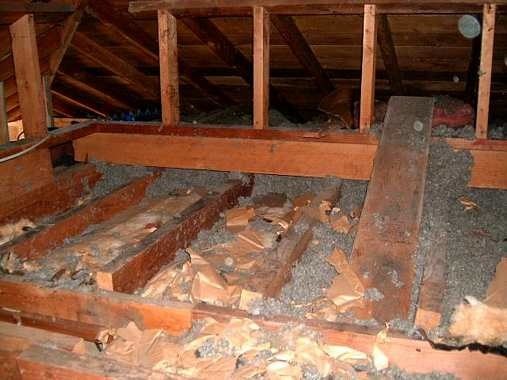 bg_08_joists_and_roof_support